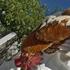 Aviaria, prime aperture del Governo<br />sulla sospensione delle tasse