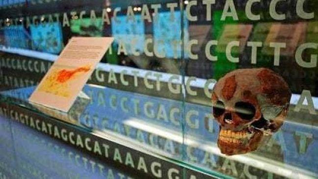 Relative tecniche di datazione antropologia