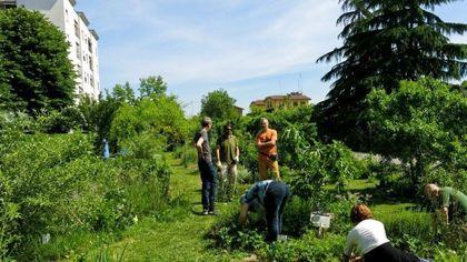 La Picasso Food Forest diventa bene comune urbano