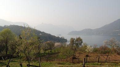 La qualità dell'aria in Italia.