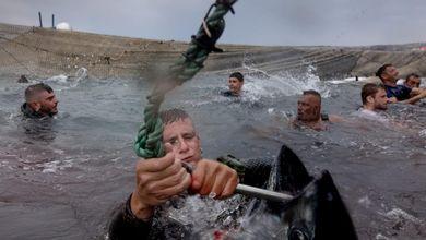 Il rito della mattanza dei tonni divide ancora la Sardegna