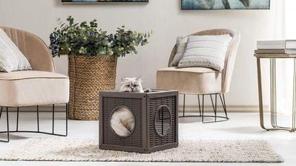 Pet design: cucce, ciotole e accessori che uniscono comfort, funzionalità ed estetica
