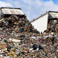 Inquinamento del suolo, presentato il primo report sulla situazione globale: il prossimo decennio sarà cruciale.