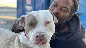 Senzatetto rischia la vita per salvare da un incendio tutti i cani e i gatti intrappolati in un rifugio