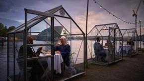 Tables in anti-coronavirus greenhouses: the suggestive idea of an Amsterdam restaurant