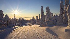 In treno al Circolo Polare Artico, dove non tramonta mai il sole