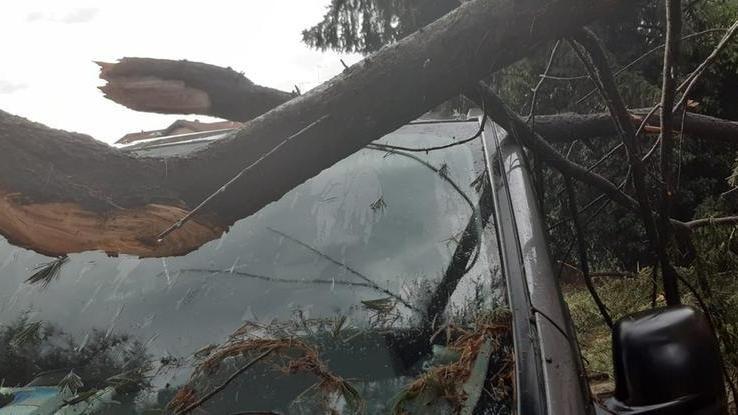 Tetti scoperchiati, cortili allagati e alberi sradicati: danni per il maltempo nel Novarese