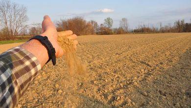 Sos dai campi, raddoppia il costo delle semine