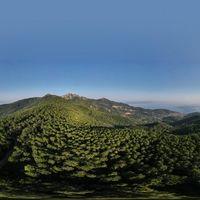 L'Isola d'Elba interamente sostenibile entro il 2035: un manifesto per la perla dell'arcipelago toscano