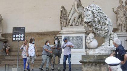 """Cavallo imbizzarrito """"tampona"""" l'auto della ministra in piazza Signoria"""