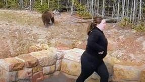 A woman is sentenced to prison for having a close encounter with a grizzly bear in Yellowstone Park