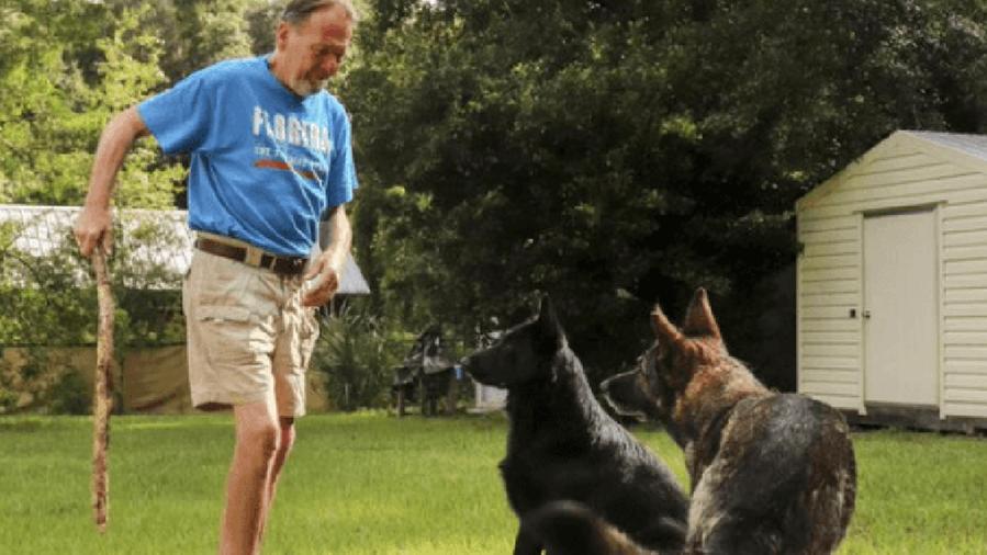 Cane capisce che il suo proprietario sta male e apre tre chiavistelli per chiamare i soccorsi