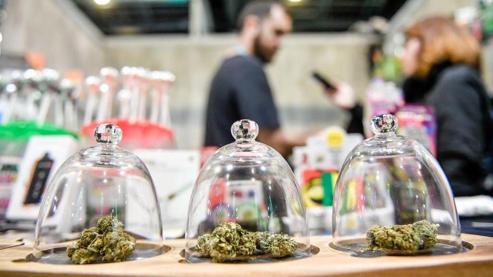 Sito di incontri per utenti di cannabis