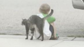 L'adorabile momento in cui il gatto dei vicini consola un bambino triste seduto sul marciapiede