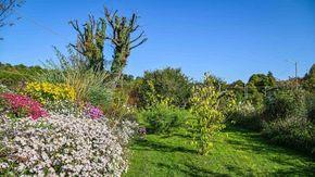 Nel giardino di campagna di Giancarlo, dove il selvaggio s'intreccia a piante di pregio