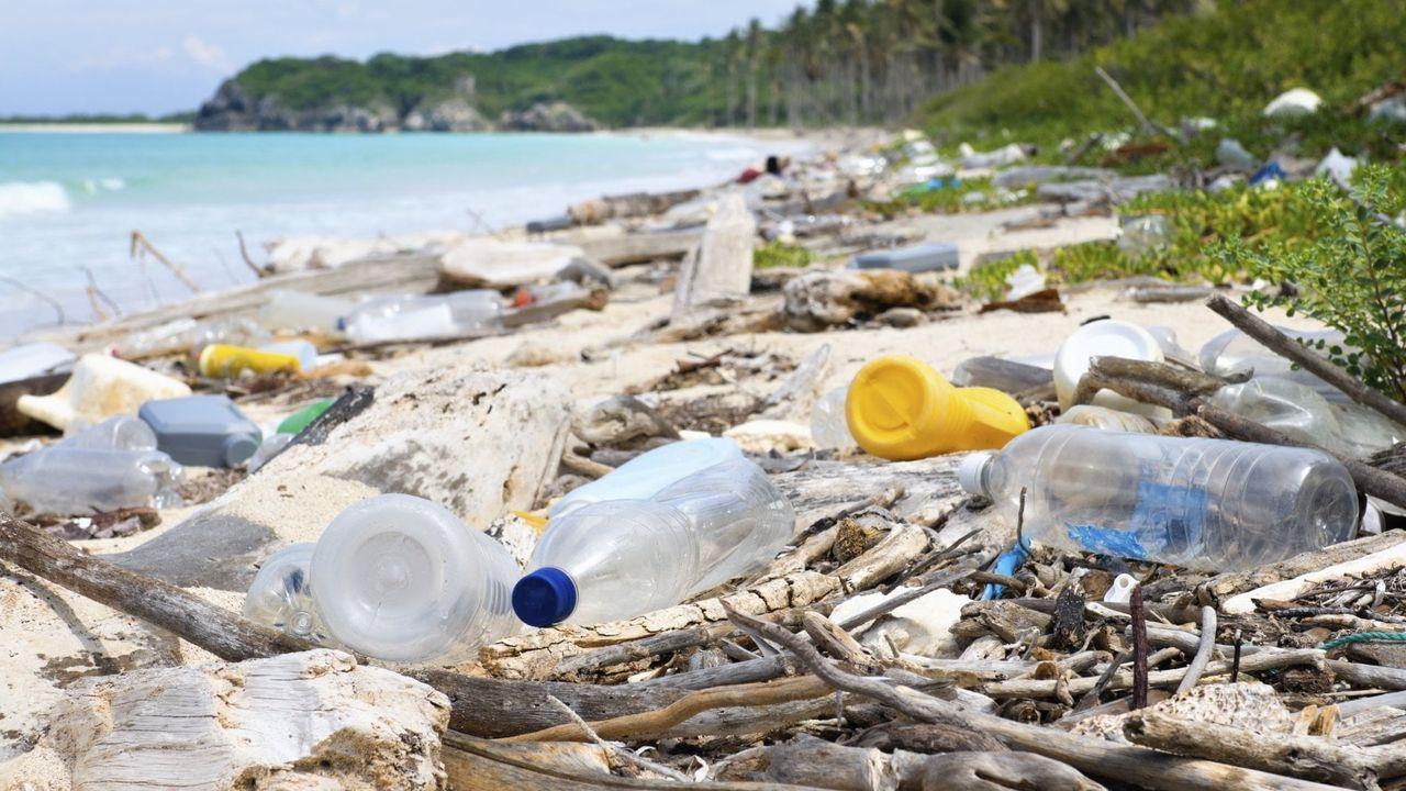 I Big dell'acqua sanno che le bottigliette sono come il tabacco | Rep