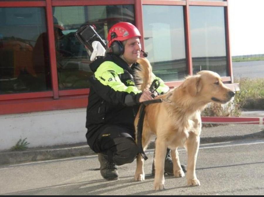 Morto Lucky,  cane pompiere che lavorò su resti delle Torre Piloti crollate a Genova