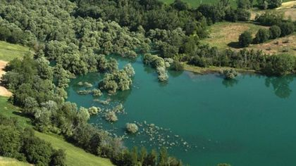 Dalla nitticora all'airone: lo spettacolo della natura nella Riserva Naturale Lago di Penne
