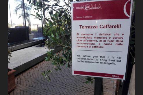 Musei Capitolini Sulla Terrazza Caffarelli Sconsigliato