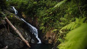 Destinazione Porto Rico: paradiso per eco-turisti, comunità Lgbtq+ e vaccinati