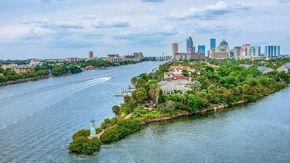 Non puoi andare a Tampa Bay? Visitala on-line