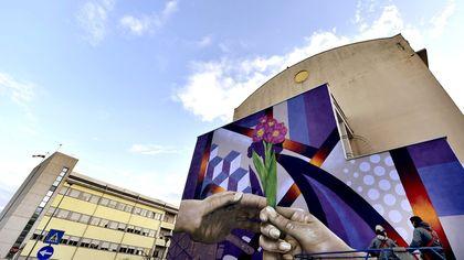 Covid, il fiore della speranza colora l'ospedale di Vaio