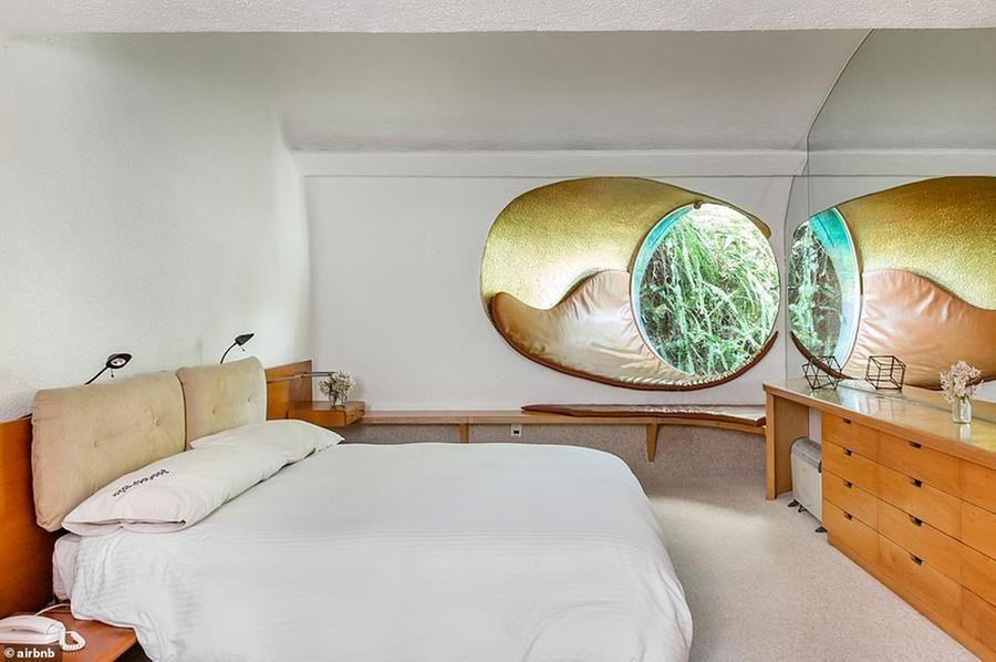En México puedes dormir en una casa de serpientes sinuosa