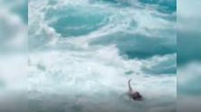 Hawaii, coppia di turisti rischia di annegare per l'alta marea