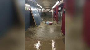 New York, la metro sommersa dall'acqua: uomo rischia di finire sotto un treno