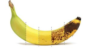 Da verde a marrone: quando bisogna mangiare una banana? I vantaggi di ogni fase