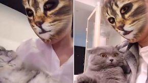 Con l'app anche il padrone diventa un gatto: le reazioni dei mici sono esilaranti