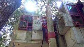 Edifici surreali in Italia, la Casa Albero di Fregene: da anni abbandonata e vandalizzata