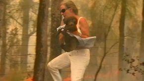 Una donna coraggiosa sfida le fiamme e salva un koala
