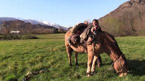 Dalla Mongolia alla Val Susa a cavallo: il viaggio solitario di Paola sulle orme di Gengis Kahn