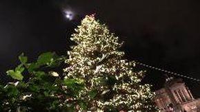 Roma, la sindaca Raggi accende Spelacchio e torna a parlare con ''l'albero più famoso del mondo''
