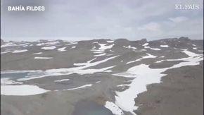 """""""Ecco come appare l'Antartide senza neve"""": i ricercatori sorpresi dalla carenza di ghiaccio"""