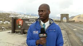 Vede una mandria di bisonti avvicinarsi troppo,  la reazione del reporter è unica