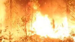 Russia, Siberia devastata dagli incendi
