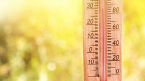 Come sopravvivere freschi in casa d'estate anche senza condizionatore: i trucchi che non ti aspetti