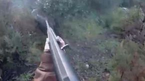 Cacciatrice sarda spara al cinghiale, ma non lo prende e l'animale la attacca: si salva colpendolo con la canna del fucile