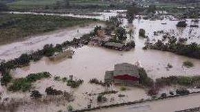 Maltempo in Sicilia, esonda il fiume Simeto a Catania: strade e abitazioni sommerse da acqua e fango