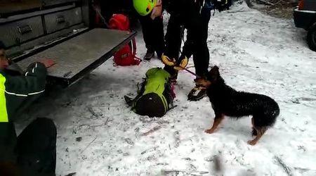 Recuperato il secondo cane della coppia di triestini dispersi sul monte Lussari