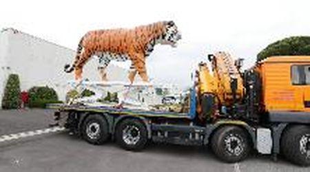 Monsummano, la tigre simbolo del calzaturificio torna sul tetto