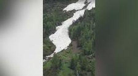 """Tirolo, con i primi caldi nella foresta verdissima scorre un """"fiume"""" di neve candida"""