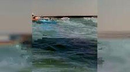 Si ribaltano col catamarano: salvati dalla guardia costiera