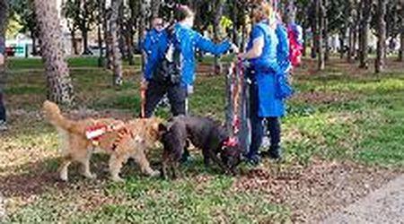 Volontari in azione per ripulire la pineta di Barcola
