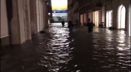 Maltempo, a Venezia il centro è una piscina: si cammina con l'acqua alle ginocchia