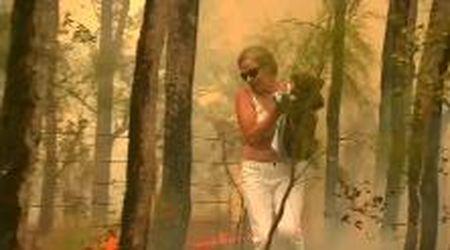Australia, donna corre nel bosco in fiamme per salvare un koala dall'incendio