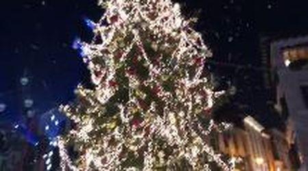 La magia del Natale a Treviso, si accende l'albero dalle mille luci in piazza dei Signori