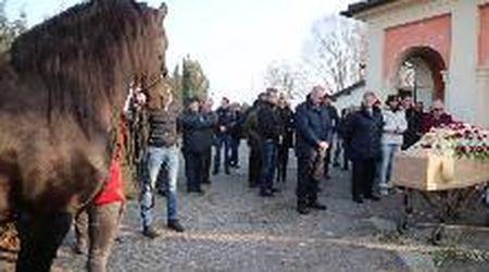 Al funerale dell'allevatore di Vigevano c'è anche il suo cavallo